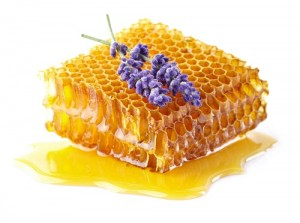 Honeycombs with lavender flowers